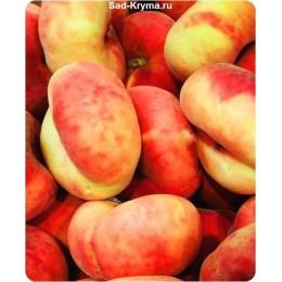 Саженцы инжирного персика Бельмондо